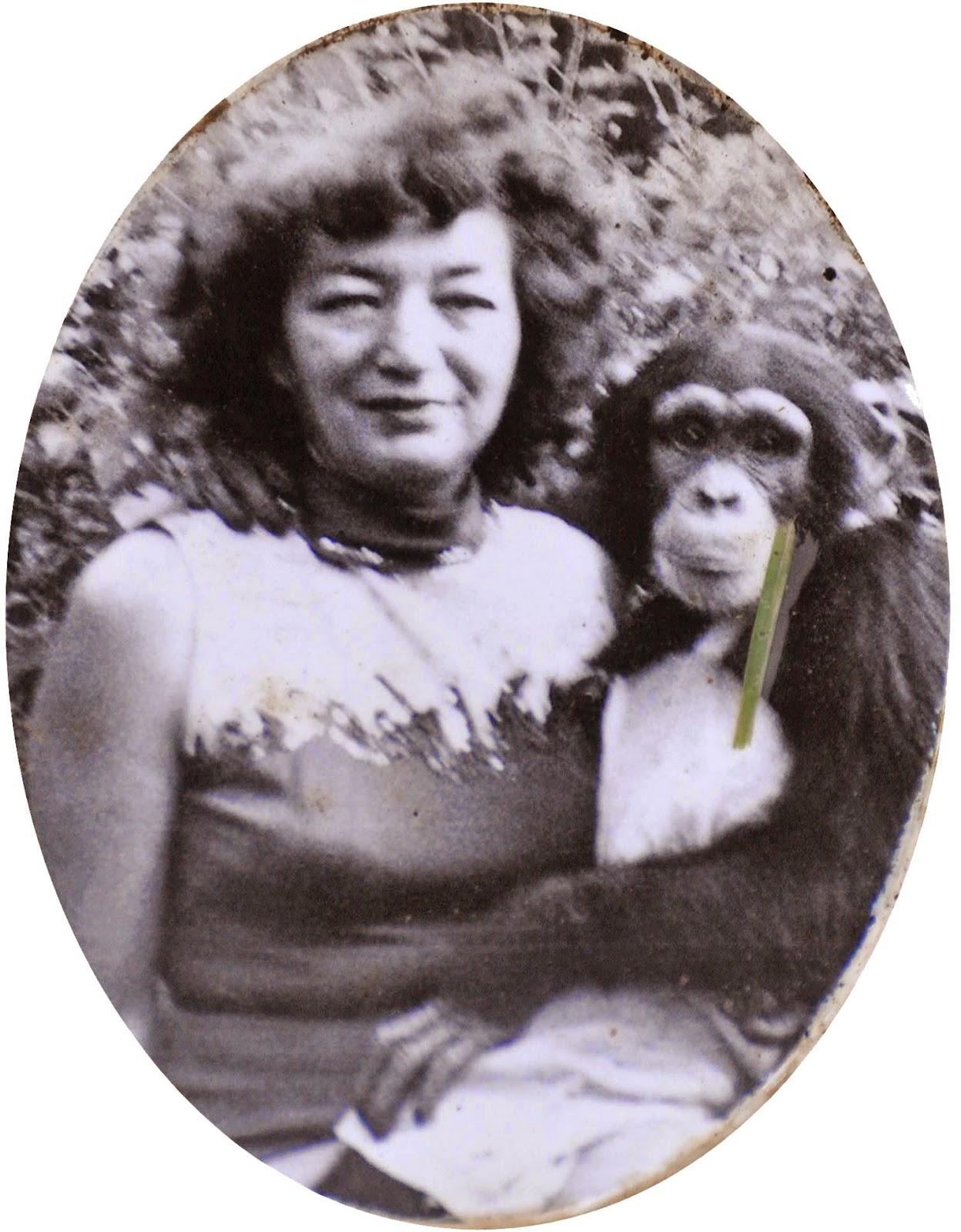 circus-monkey copy